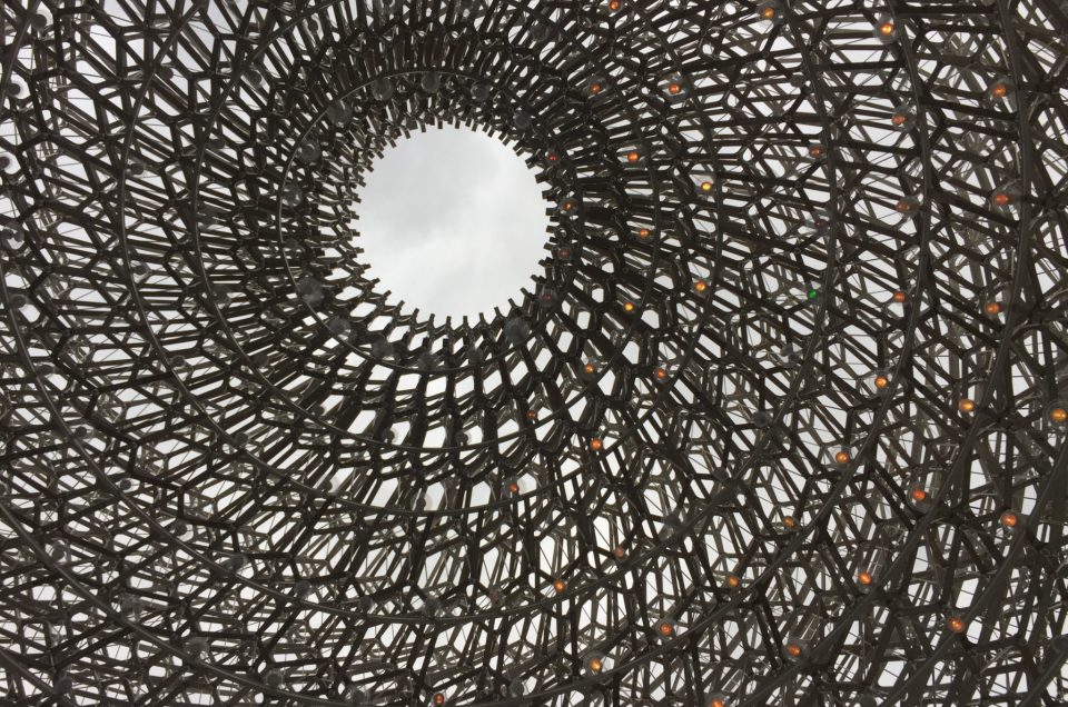 DA Team Visit 'The Hive' at Kew Gardens